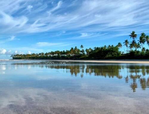 Morro de São Paulo e Ilha de Boipeba, na Bahia, vão reabrir para o turismo!